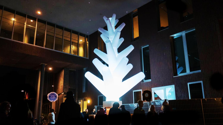 Opblaasbare kunst boom - kunst en cultuur - Light Festival Glow